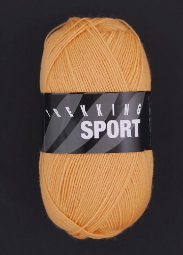Trekking sport 1489