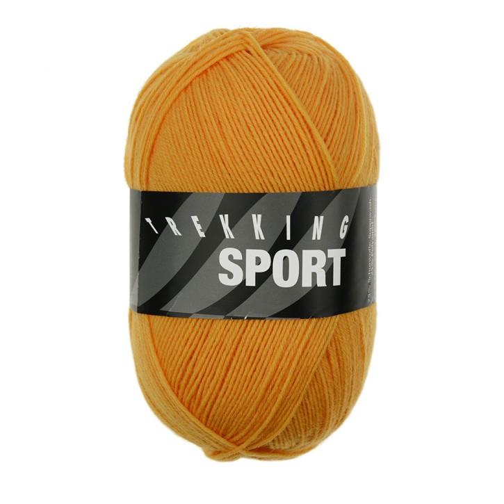 Trekking sport 1490